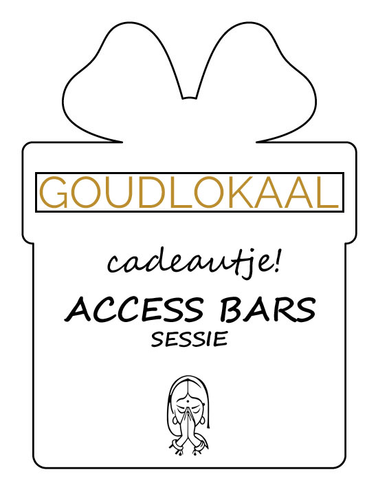 Access-Bars-sessie