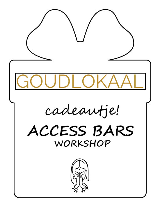 Access-Bars-workshop